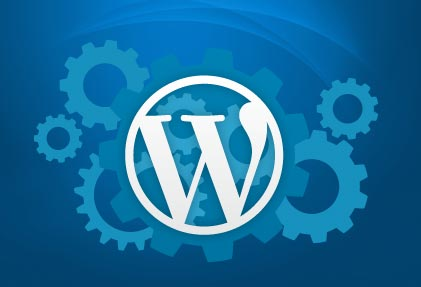 Top 5 WordPress Plugins 2014